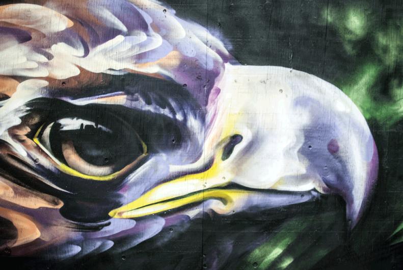 toronto.streetart.neverleavetheclouds.2015.27