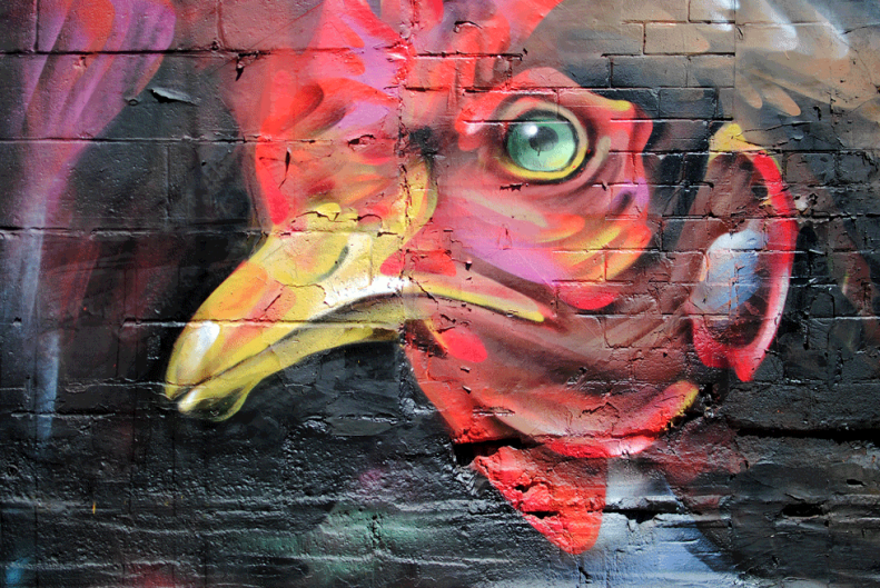 toronto.streetart.neverleavetheclouds.2015.31