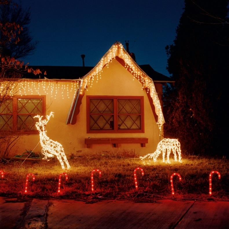 Christmas Deer 001